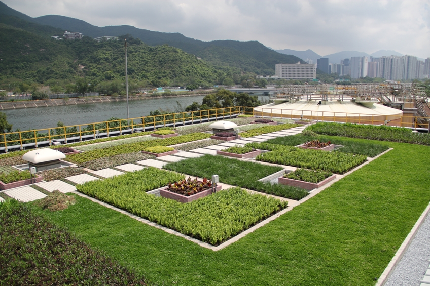 "Green roof at Sha Tin Sewage Treatment Works for ""Study of Green Roof"""